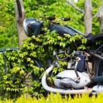 ������, ������: Abandoned motorcycle