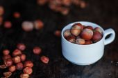 Hazelnuts in a white cup on a dark table — 图库照片