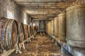 Wine barrels and vats in an abandoned wine cellar — Stock Photo