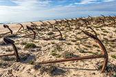 Cemetery of anchors on the beach at Praia Do Barril in Santa Luz — Stockfoto