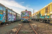 Abandoned tagged trains outside train cemetery — Stock Photo