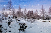 Beautiful park in winter landscape with snow covered — Stock Photo