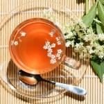 Healthy Medicine elderflower tea — Stock Photo #74060447