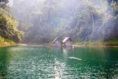 Morning on Cheow Lan Lake — Stock Photo
