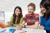 Group of diversity students studying — ストック写真