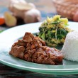 Beef rendang served with urap and rice — Stock Photo #67364661