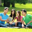 Group of students studying in the park — Stock Photo #76837573