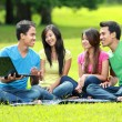 Asian student group studying in the park — Stock Photo #76837581