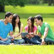 Group of students studying in the park — Stock Photo #76837597