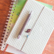 Top view of pen on two notebooks on wooden table — Stok fotoğraf #52311445