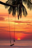 Swing hanging on the beach — Stock Photo