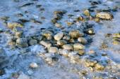 Winter Baltic sea — Foto de Stock