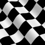 Checkered Racing Flag — Stock Video #66225285