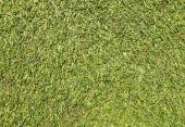 Texture of Artificial Grass Field — Stock Photo