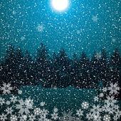 Dark night winter forest blue background — Stock Vector