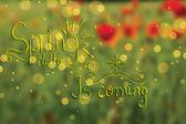 Fondo floral primavera abstracta — Vector de stock