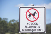 No Dogs Allowed on Sports Ground Sign — Stock Photo