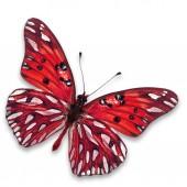 Papillon rouge — Photo