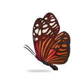Orange fjäril — Stockfoto