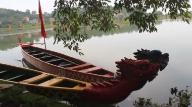 Head dragon boat, a unique culture of Vietnam — Stock Video