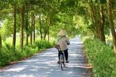 Femme asiatique, faire du vélo sur la route — Zdjęcie stockowe