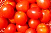 The red ripe tomatoes — Stock Photo