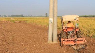 Tractor working in a field, vietnam — Stok video