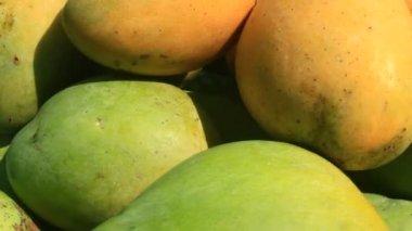 Mangos auf Platte — Stockvideo