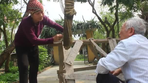 La gente atrapar abejas con la red — Vídeo de stock
