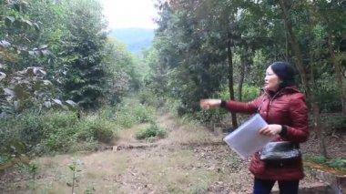 Bandit, Vietnam, 21 décembre 2014 : gens qui visitent la végétation forestière — Vidéo