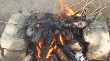 Grilling fish on barbecue — Stock Video
