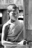 An unidentified  young novice monk 12 years old poses for a phot — Stock Photo