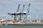 Container-terminal — Stockfoto