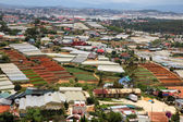 Dalat - Vietnam - Urban growth versus agriculture — Stock Photo
