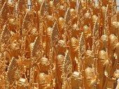 Bouddha d'or — Photo