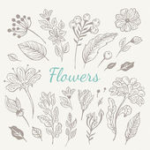 Hand drawn vintage flowers set — Stock Vector