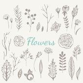 Hand drawn vintage flowers set — Stockvector