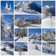 Winter landscape collage — Stock Photo #63484479
