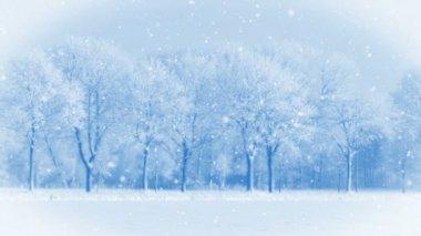 冬の夢 — ストックビデオ