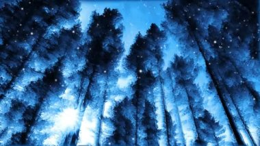 Winter trees — Stock Video