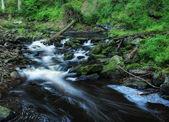 Blanice river in Bohemia — Stock Photo