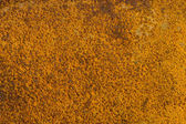 The rusted metal background — Stock Photo