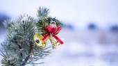 Christmas decoration on natural fir — Stock Photo
