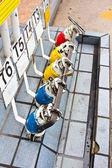 Distributeur d'essence mazout coloré. — Photo