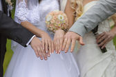 Hands with wedding rings two pairs — Stock Photo