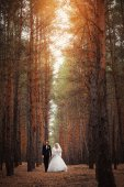 Wedding bride and groom in forest — Stok fotoğraf