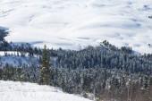 Peaceful Winter Landscape  — Stock Photo