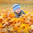 Happy kid in yellow autumn leaves in the park — Stock Photo #56576795