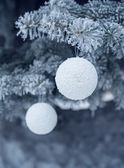 Snow-covered fir tree with toy ball — Stockfoto