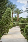 Park detail from a 5 star luxury hotel resort near Egypt — Stock Photo